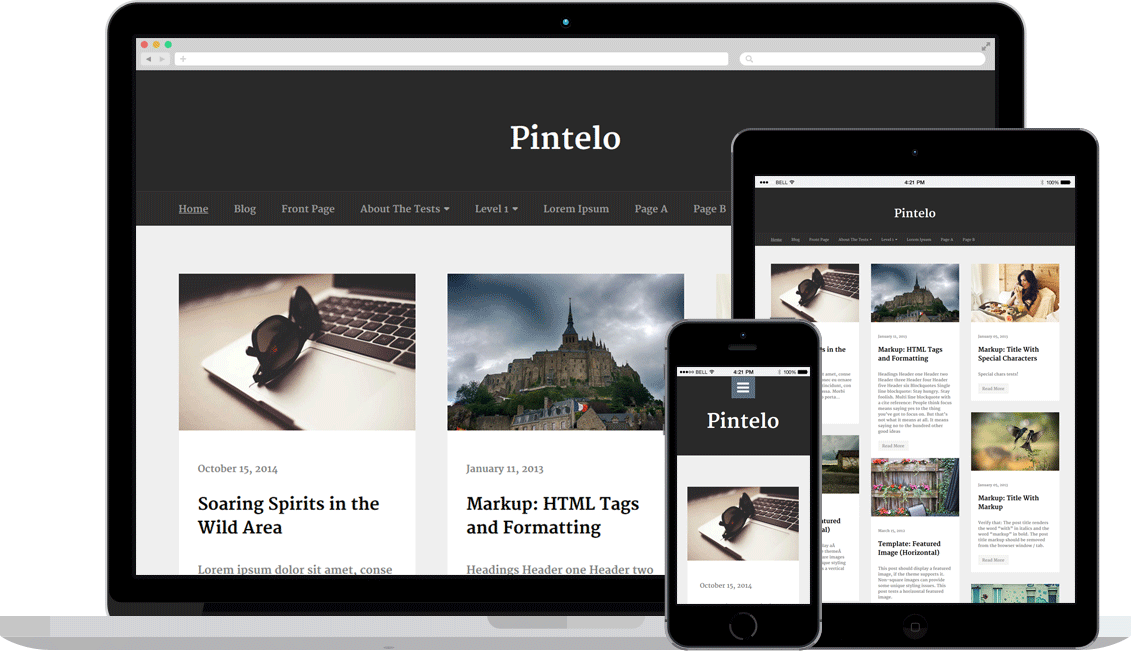 Pintelo_Responsive