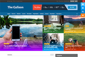 The Galison - Multi-Concept News and Magazine Theme